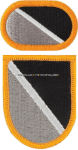 US ARMY 1 SPECIAL WARFARE TRAINING GROUP FLASH AND OVAL