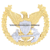 Coast Guard Command Ashore Badge