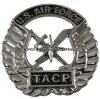 USAF TACTICAL AIR CONTROL PARTY (TACP) BERET BADGE