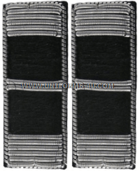 U.S. ARMY CHIEF WARRANT OFFICER 2 EMBROIDERED BULLION RANK INSIGNIA