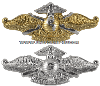 U.S. NAVY FLEET MARINE FORCE BADGE