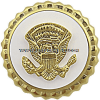 Vice-Presidential Service Lapel Pin