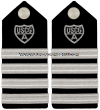USCG AUXILIARY HARD SHOULDER BOARDS DISTRICT CHIEF OF STAFF (DCOS) - DISTRICT CAPT. (DCAPT)