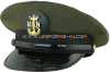 U.S. NAVY MASTER CPO AVIATION WORKING GREEN COMBINATION CAP