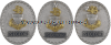 coast guard sector badge