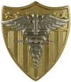 U.S. COAST GUARD PHYSICIAN ASSISTANT AND NURSE PRACTITIONER BADGE
