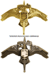 USMC MARINE CORPS FORCES SPECIAL OPERATIONS COMMAND INSIGNIA