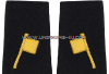 US PUBLIC HEALTH SERVICE QUARANTINE SOFT SHOULDER BOARDS