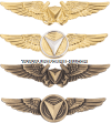 USMC UNMANNED AIRCRAFT SYSTEMS BADGE