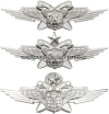 USAF BASIC MULTI DOMAIN WARFARE OFFICER BADGE
