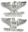 U.S. NAVY / USCG CAPTAIN AND USMC COLONEL COLLAR DEVICES