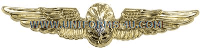 U.S. Navy Flight Surgeon Badge