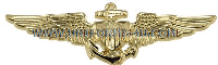 U.S. NAVY NAVAL AVIATOR BADGE