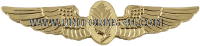 U.S. NAVY AVIATION EXPERIMENTAL PSYCHOLOGIST / PHYSIOLOGIST BADGE