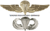 US navy and marine corps parachutist badge