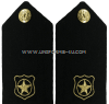 US NAVY CWO HARD SHOULDER BOARDS physical security