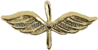 U.S. Navy Chief Aviation Machinist's Mate (AD) Collar Device