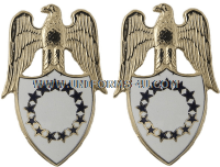 US aide to the vice president of the us army insignia