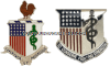 U.S. ARMY MEDICAL DEPARTMENT REGIMENTAL DISTINCTIVE INSIGNIA
