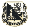 army chemical corps regimental uniform crest