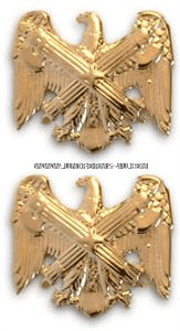 U.S. ARMY NATIONAL GUARD BUREAU COLLAR DEVICES