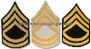 U.S. ARMY SERGEANT FIRST CLASS CHEVRONS