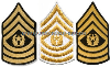 U.S. ARMY COMMAND SERGEANT MAJOR (E-9) CHEVRONS