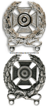 army expert shooting badge