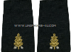 U.S. NAVY DENTAL CORPS SOFT EPAULETS