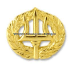 U.S. Navy Command Ashore Badge