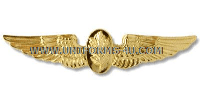 U.S. Navy Flight Nurse Badge