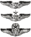 usaf astronaut badge