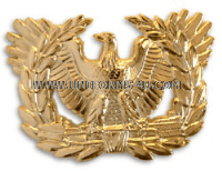 ARMY WARRANT OFFICER CAP DEVICE