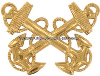 us navy cap device wo1