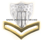 COAST GUARD CAP DEVICE GARRISON E5 GOLD AND SILVER