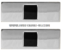 U.S. ARMY WARRANT OFFICER (WO1) COAT RANK INSIGNIA