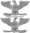 U.S. Army Pin-On Metal Colonel Rank Insignia
