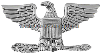 U.S. ARMY COLONEL CAP RANK INSIGNIA