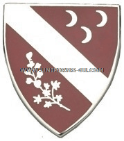U.S. ARMY 7TH FIELD ARTILLERY REGIMENT UNIT CREST