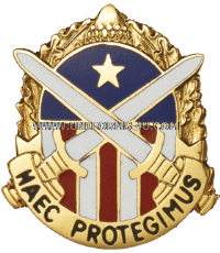 military district of washington unit crest