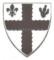 ARMY 118 MEDICAL BATTALION UNIT CREST