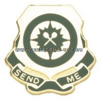795 MILITARY POLICE BATTALION UNIT CREST