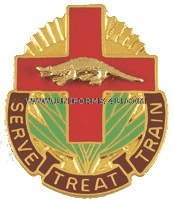 ARMY 345 COMBAT SUPPORT UNIT CREST