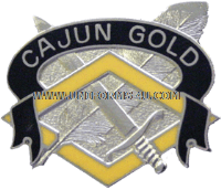 ARMY 336 FINANCE COMMAND UNIT CREST