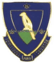 ARMY 314 INFANTRY REGIMENT USAR UNIT CREST