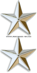 BRIGADIER GENERAL / REAR ADMIRAL LOWER HALF 1-STAR SHOULDER RANK INSIGNIA