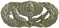 usaf services badge