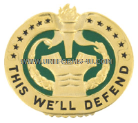 army drill sergeant badge