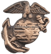 Fleet Marine Force Combat Operation Insignia for Medals and Ribbons