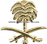 Palm Tree Attachment for Kuwait Liberation Medal - Saudi  Arabia